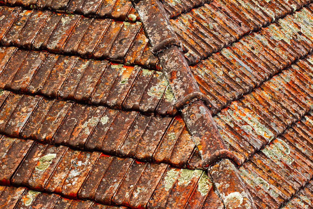 granular retention roof shingles