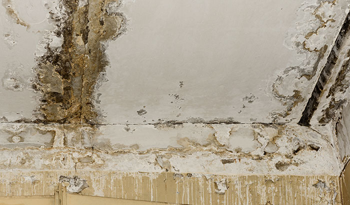 3-Major-Consequences-of-a-Leaking-Roof